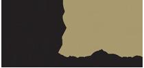 logo TNSC